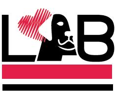LabforDream